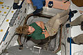 STS-135 Sandy Magnus in the Unity module.jpg