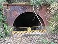 Saguriya tunnel.jpg