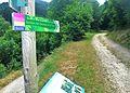 Saint-Julien-Vocance sentier sources.jpg