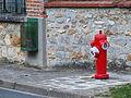 Saint-Martin-en-Bière-FR-77-bouche d'incendie-34.jpg