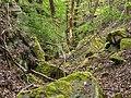 Sand Steinbruch Hermannsberg I-20200418-RM-154101.jpg