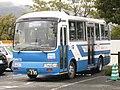 Sanko-Bus295.jpg
