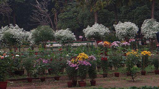 Santiniketan Garden