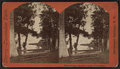 Saratoga Lake and Vicinity, by McDonnald & Sterry.png