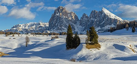 Saslonch da Mont de Seuc.jpg