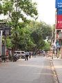 Satish Mukherjee Road - Kolkata 2011-06-11 0021.JPG