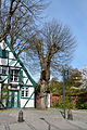 Schleswig-Holstein, Wedel, Naturdenkmal 07-02 NIK 2148.JPG