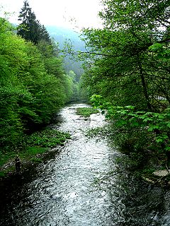 Schwarza (Saale) river in Thuringia, tributary of Saale
