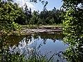 Schwarzweiher 1 - panoramio.jpg