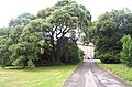 Scolton Manor - geograph.org.uk - 13744.jpg
