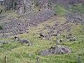 Scree and Boulders below Red Craig - geograph.org.uk - 392277.jpg