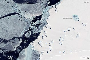 Sea Ice and Icebergs off East Antarctica - NASA Earth Observatory.jpg