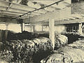 Seattle - Frye-Bruhn wool & hide storage - 1900.jpg