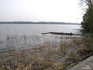 See vom Ufer in Torgelow am See