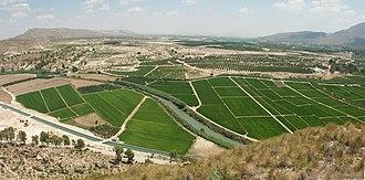 Segura - The Vega Alta del Segura near Calasparra, Murcia, famous for its rice.