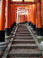 Sembon-Torii in Fushimi Inari Grand Shrine 9.jpg