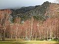 Serra da Estrela - 3.jpg