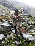 Shepherd on the way to Hampta Pass.jpg