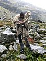 Shepherd on the way to Hampta Pass.jpg