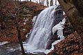 Sherman Falls - panoramio - Eric Marshall (2).jpg