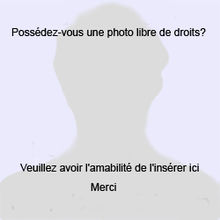 alt=Description de l'image Silhouette homme.jpg.