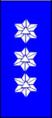 Sivilforsvaret-Distinksjon-FIG-leder.png