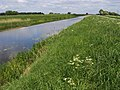Sixteen Foot Drain - geograph.org.uk - 813496.jpg