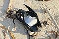 Slippers on the beach of Bantayan 19.jpg