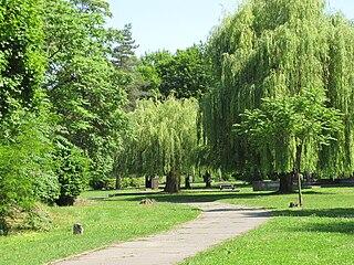 Park - umelé spoločenstvo