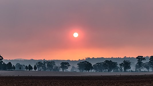 Smoky sunset in Western NSW.jpg