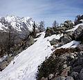 Snow on Mont Chetif.jpg