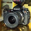 Sony alpha 900 IMG 2199.jpg
