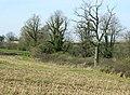 South of West Kington - geograph.org.uk - 1231530.jpg
