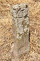 Spomenici na seoskom groblju u Nevadama (87).jpg