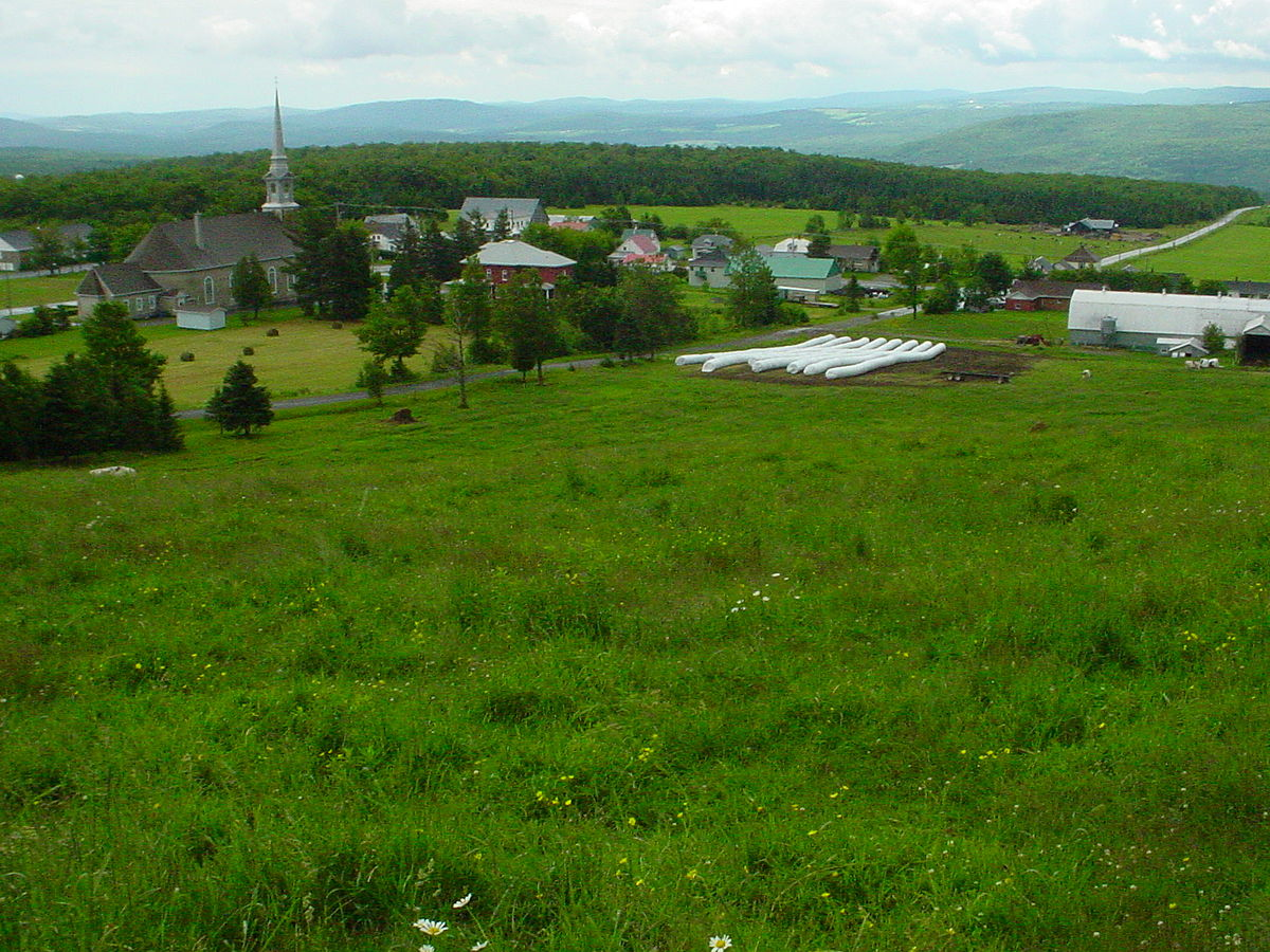 Saint Adrien D Irlande Wikipedia