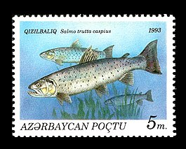 Stamps of Azerbaijan, 1993-197.jpg