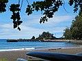 Starr-140726-1157-Terminalia catappa-habit view canoes and ocean-Hana Bay-Maui (25151433451).jpg