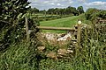 Stile near Doughton - geograph.org.uk - 860092.jpg