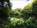 Stroud ... a little calm near Tricorn House roundabout. - Flickr - BazzaDaRambler.jpg
