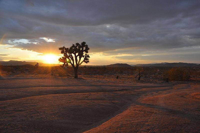 Sundown at Eastland Ranch.JPG