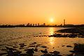 Sunset in Kasai Rinkai Park (8748640793).jpg