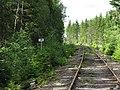 Svanskogsbanan 15km.jpg