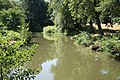 Svitava river in Rájec-Jestřebí, Blansko District.jpg