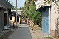 Swadesh Ranjan Ghosh Road - Taki - North 24 Parganas 2015-01-13 4593.JPG