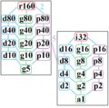 Symmetries of octacontagon.png