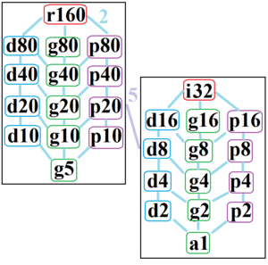 Octacontagon - The symmetries of a regular octacontagon. Light blue lines show subgroups of index 2. The left and right subgraphs are positionally related by index 5 subgroups.