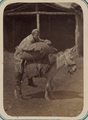 Syr Darya Oblast. City of Tashkent and the Types of People Seen on Its Streets. A Man Riding a Donkey WDL10950.png
