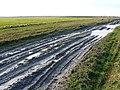 Tank track near Chirton Down - geograph.org.uk - 655981.jpg