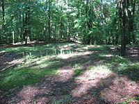 Tarlton Cross Mound from the east.jpg