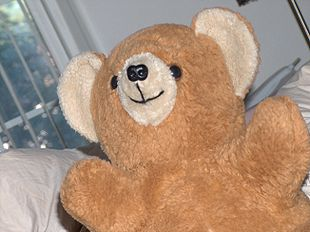 Teddy Bear 01.jpeg